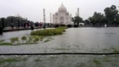 Already green patches on the surface have appeared at the rear side of the Taj Mahal. (Photo: IANS)
