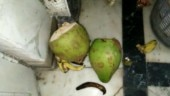 West Delhi: Hungry thieves ransack house, enjoy beer and bananas
