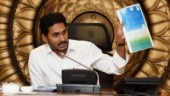Give 75% jobs to locals: AP CM YS Jaganmohan Reddy asks private companies