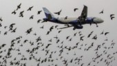 What made Pakistan open its airspace for India