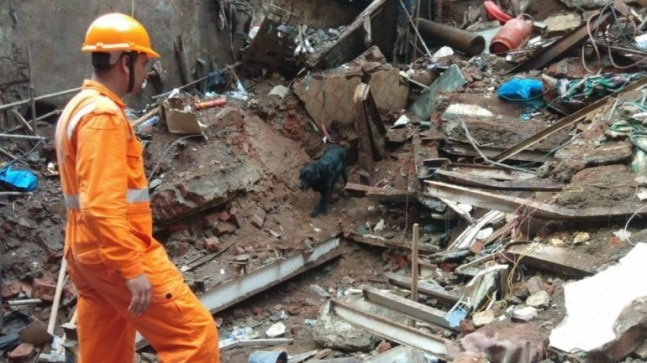 Death toll in Mumbai building collapse rises to 14, rescue operations continue overnight