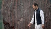 I stood alone in election, Rahul Gandhi tells Congress. Here's why he is right