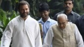 Who will be next Congress president? Team Rahul vs loyalist old guard