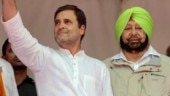 Captain Amarinder favours young leader with pan-India appeal as Rahul Gandhi's replacement