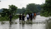 Bihar floods death toll climbs to 130
