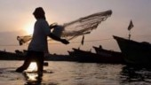 Six fishermen rescued, 25 still missing in Bay of Bengal