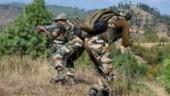 J&K: Pakistan violates ceasefire along LoC in Poonch district