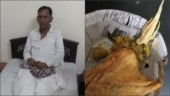 Lizard in food: 70-yr man dupes Indian Railways, gets caught. What follows is crazy