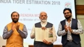 Baaghon mein bahaar hai: PM Modi releases Tiger Census, India achieves target 4 years early