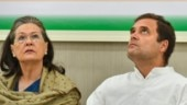 No consensus, decision on Rahul Gandhi's replacement as Congress chief further delayed