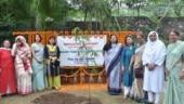 JMI launches plantation drive, honours women achievers