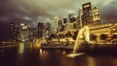 7 reasons why Singapore is the best destination to study abroad