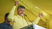Chandrababu Naidu accuses Jagan govt of conspiring to shift capital, YSRCP rejects charge