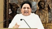Mayawati slams Congress for Kashmir visit, says it only gave Centre chance to do politics