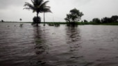 Maharashtra floods: 12 Navy teams deployed in Sangli