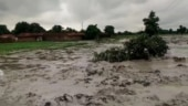 Madhya Pradesh: Essar asked to pay Rs 50 lakh compensation for damage to crops, property in Singrauli