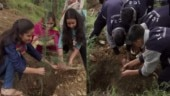 Over 200 differently-abled students pay tribute to late Sushma Swaraj by planting trees: Himachal