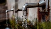 Delhi govt directs schools to conduct awareness on water conservation