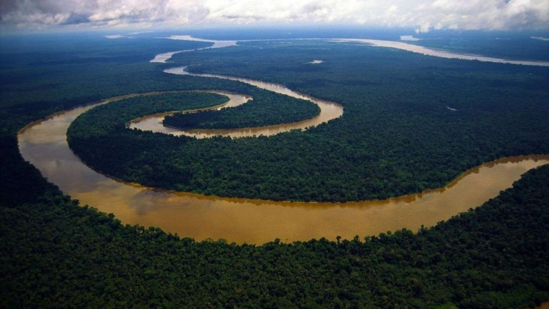 15 incredible facts about Amazon rainforest, the \'Lungs of ...