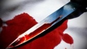 Sikh man stabbed to death in US