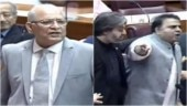 Joote maarunga: Senator and minister have a nasty fight in Pakistan Parliament. Viral video