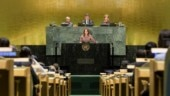 UNGA president calls for constant nurturing of peace