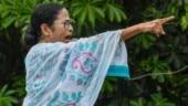 Respect all languages but not at cost of mother tongue: Mamata Banerjee on Hindi Diwas