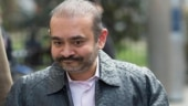 ED says Nirav Modi's brother Nehal Modi laundered over $100 million for him, destroyed evidence