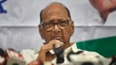 ED case against Sharad Pawar focuses on money trail and diversion of funds