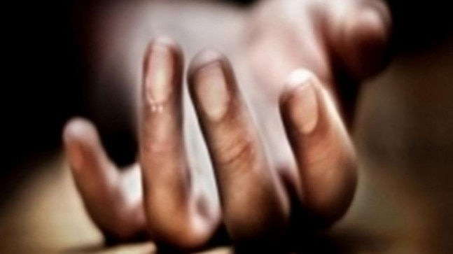 Telangana: 9-yr-old among 2 dead after eating poisoned birthday cake sent by his uncle
