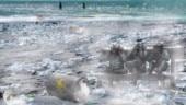 UGC asks varsities to ban single-use plastic