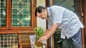 Delhi CM Arvind Kejriwal launches special drive against dengue