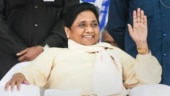All is well, we will remain with Mayawati: BSP MLAs in MP