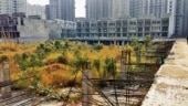 Ghost city: Over 100 residential towers abandoned by builders in Noida
