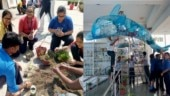 Students create dolphin statue, vertical garden entirely with plastic waste from around their school