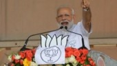 PM Modi's green push at Rohtak rally in poll-bound Haryana today | All you need to know