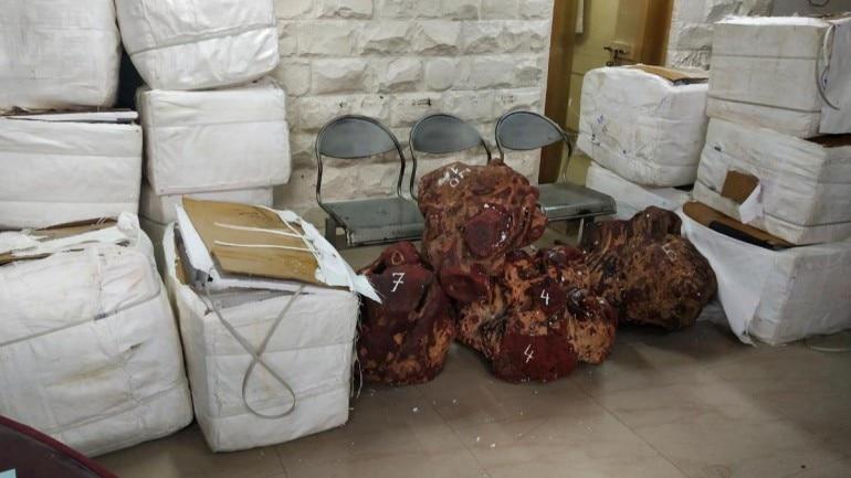 Mumbai Crime Branch busts international racket smuggling red sandalwood