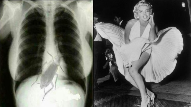 Fact Check: Do not believe this bizarre story of Marilyn Monroe's X-ray