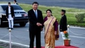 Nepal rolls the red carpet for Xi Jinping