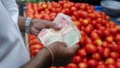 Centre asks Mother Dairy to sell tomatoes at Rs 55 per kg or below