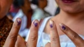 Campaigning for bypolls to 11 assembly seats in Uttar Pradesh ends