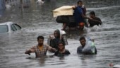 Bihar rain: Toll rises to 42, rescue operations intensified