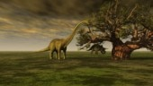 India's Deccan Traps may have helped Earth's ecosystems recover after dinosaur extinction