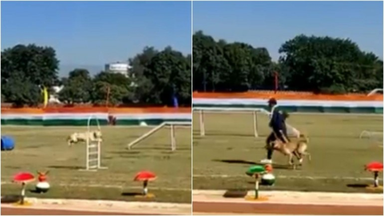 Screengrabs from video shared by Uttarakhand Police on Twitter (Photos: Twitter)