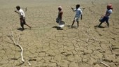 Rajasthan declares 1,388 villages in 4 districts drought-affected