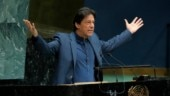 Trees produce oxygen at night says Imran Khan. Give him the Nobel prize, says Twitter