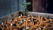 Children in Delhi smoke 10 cigarettes a day just by breathing