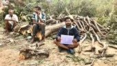 Don't cut, translocate trees: Hyderabad's Nallagandala sees fierce protests