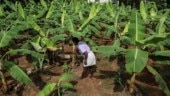 New bill passed in Kerala ensures pension, financial support to farmers