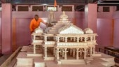 No need for govt to set up trust for Ram temple as one already exists: Ram Janmabhoomi Nyas chief